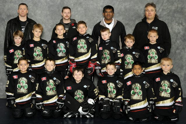 2012-2013_St._Denis_Novice_Cropped.jpg